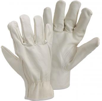 12 Paar Allergo Schweinsnappaleder-Handschuh
